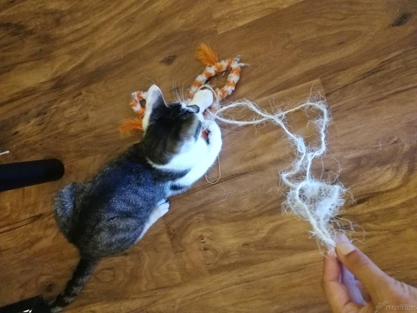 Velká kočička praskání